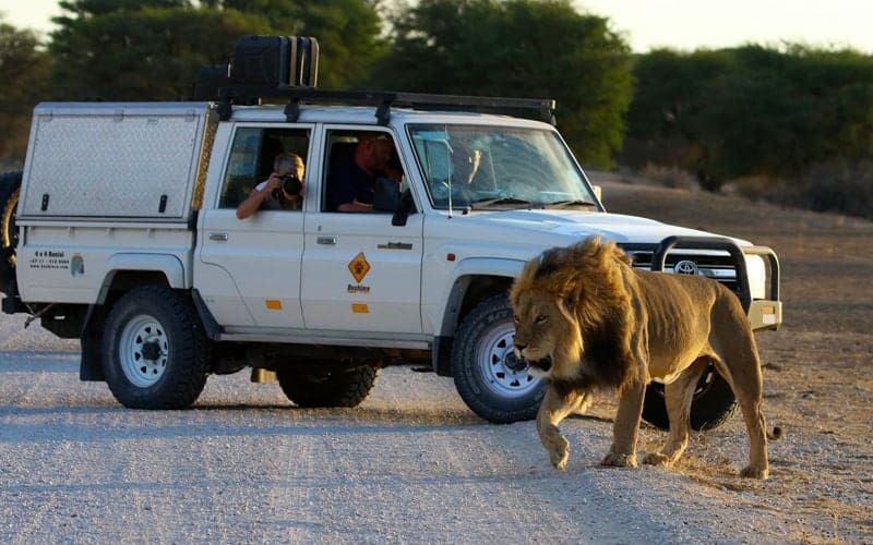 4x4 | 4WD Car Hire South Africa | 4x4 Rental | Vehicle Hire