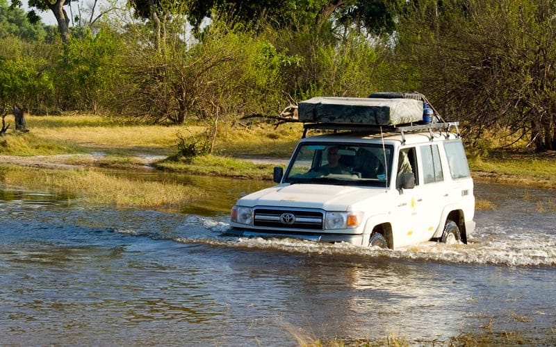 Botswana Self Drive Safari Destination Guide | 4x4 Rentals